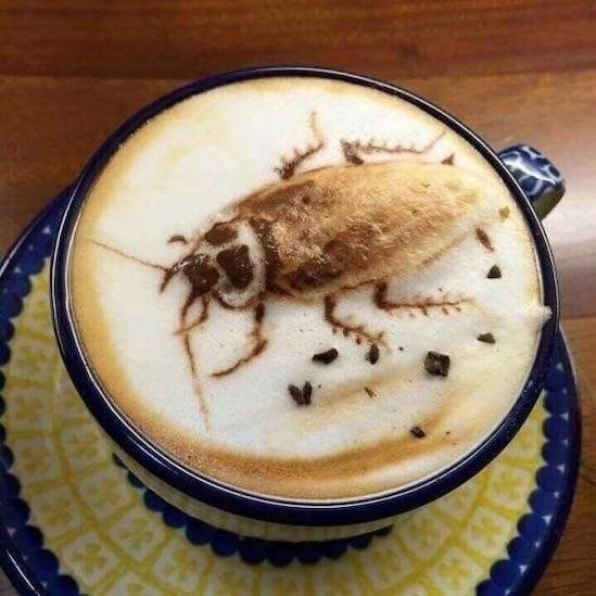 bad taste good execution - Insect