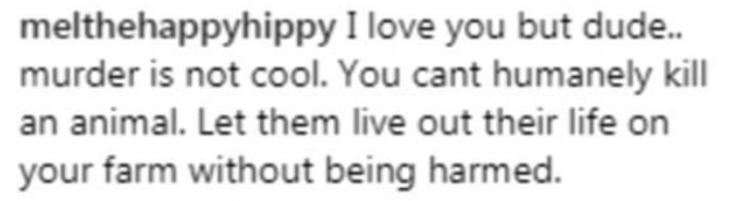 Text - melthehappyhippy I love you but dude.. murder is not cool. You cant humanely kill an animal. Let them live out their life on your farm without being harmed.
