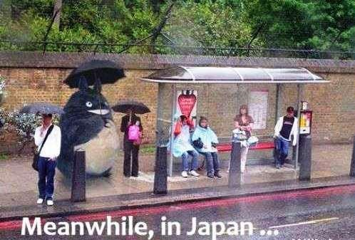 Japanese meme with picture of person dressed as Totoro standing next to people in the rain