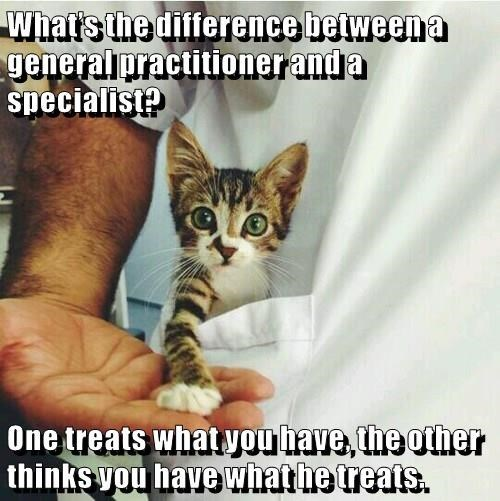 Cat Memes - What's the difference between a generalipractitioner and a specialist? One treats what vou have, the other thinks vou have what he treats