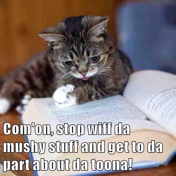 meme - Cat - Com'on, stop wiff da mushy stuff and get to da part about da toona!