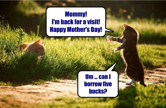 meme - Nature - Mommy! I'm back for a visit! Happy Mother's Day! Um.. can borrow five bucks?