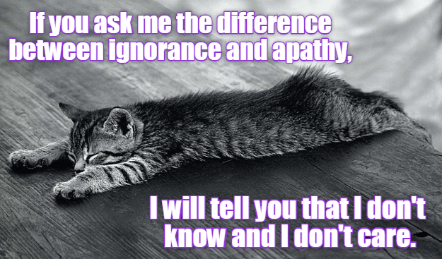 meme - Cat - If you ask me the difference between ignorance and apathy, I will tell you that I don't know and I don't care.