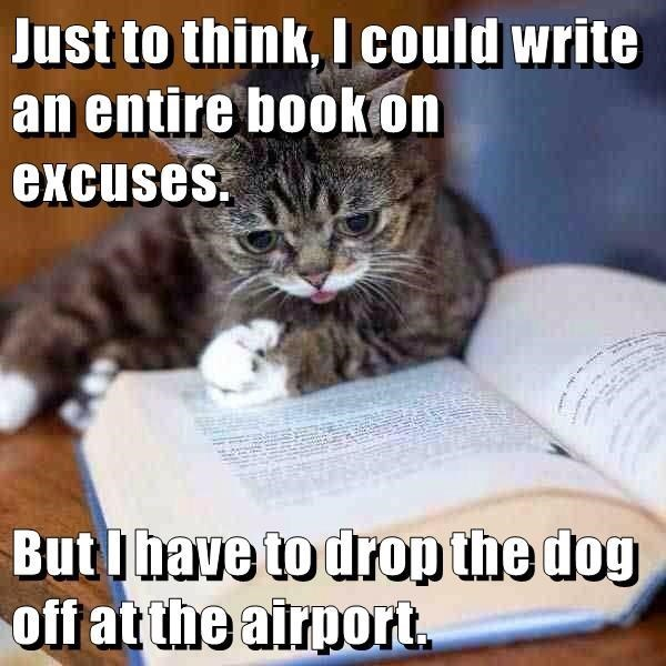 meme - Cat - Just to think, Icould write an entire bookon excuses But I have to drop the dog off at the airport