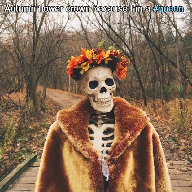 Fur - Autumn flower crown because Ima queen