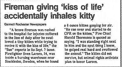 """Text - Fireman giving 'kiss of life' accidentally inhales kitty Gannett Rochester Newspepers a 6 ounce kilten gasping for air. """"He ran over and starled to do CPR on the kitten,"""" Fire Chief Harald Thorensen is quoted as saying, """"I was standing right next to him and the next thing I knew, he gulped real hard and swallowed the animal."""" The kilten did not survive, but animal rights activists plan to honor Larsen. """"A brave fireman was rushed to the hospital for injuries suifered in the line of duly a"""