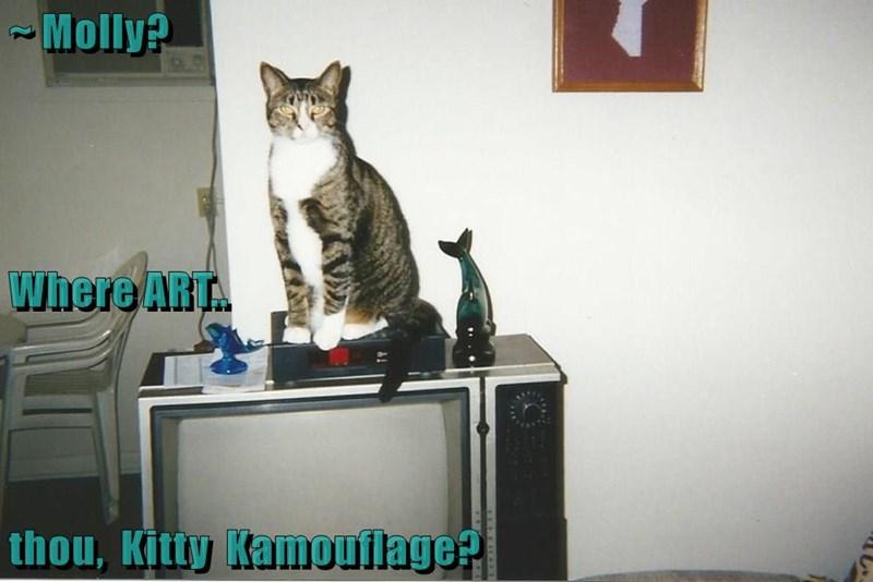 Kitty Kamouflage?