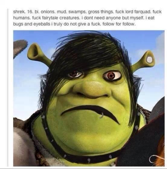 Cartoon - shrek. 16. bi. onions. mud. swamps. gross things. fuck lord farquad. fuck humans. fuck fairytale creatures. I dont need anyone but myself. i eat bugs and eyeballs i truly do not give a fuck. follow for follow.