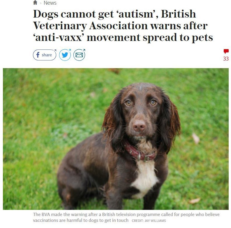 """Dogs cannot get autism, British Veterinary Association warns after anti-vaxx movement spreads to pets"""