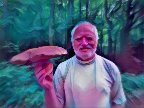 Cheezburger Image 9168575488