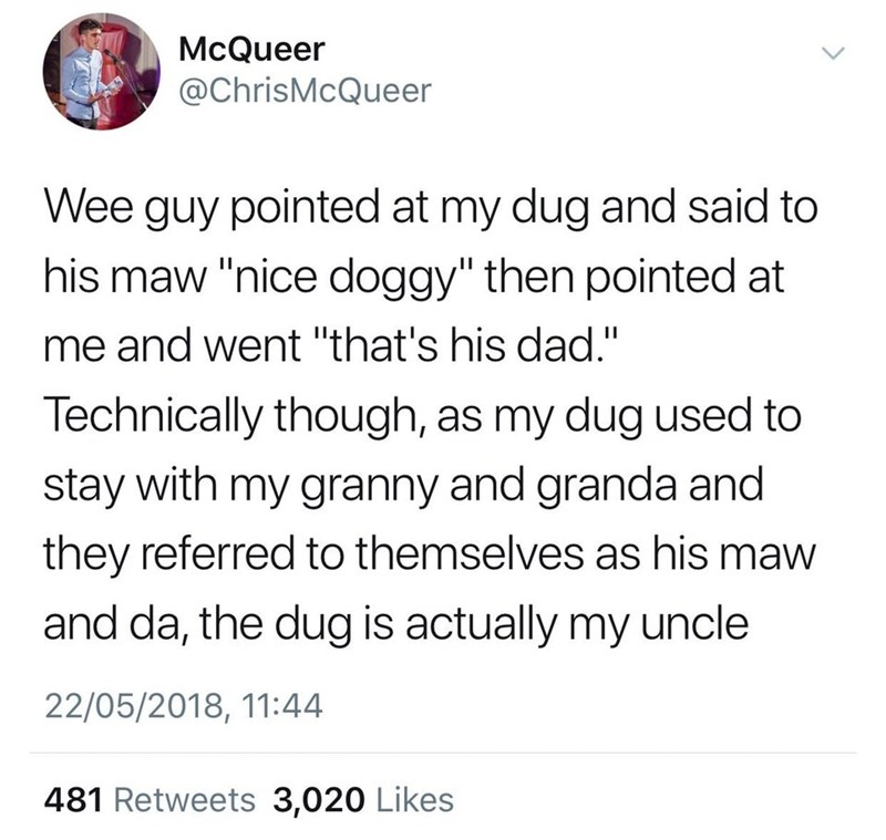 """scottish tweet - Text - McQueer @ChrisMcQueer Wee guy pointed at my dug and said to his maw """"nice doggy"""" then pointed at me and went """"that's his dad."""" Technically though, as my dug used to stay with my granny and granda and they referred to themselves as his maw and da, the dug is actually my uncle 22/05/2018, 11:44 481 Retweets 3,020 Likes"""