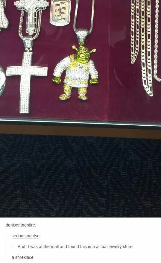 Text - danisontnonfire: seriousmantse: Bruh I was at the mall and found this in a actual jewelry store a shreklace