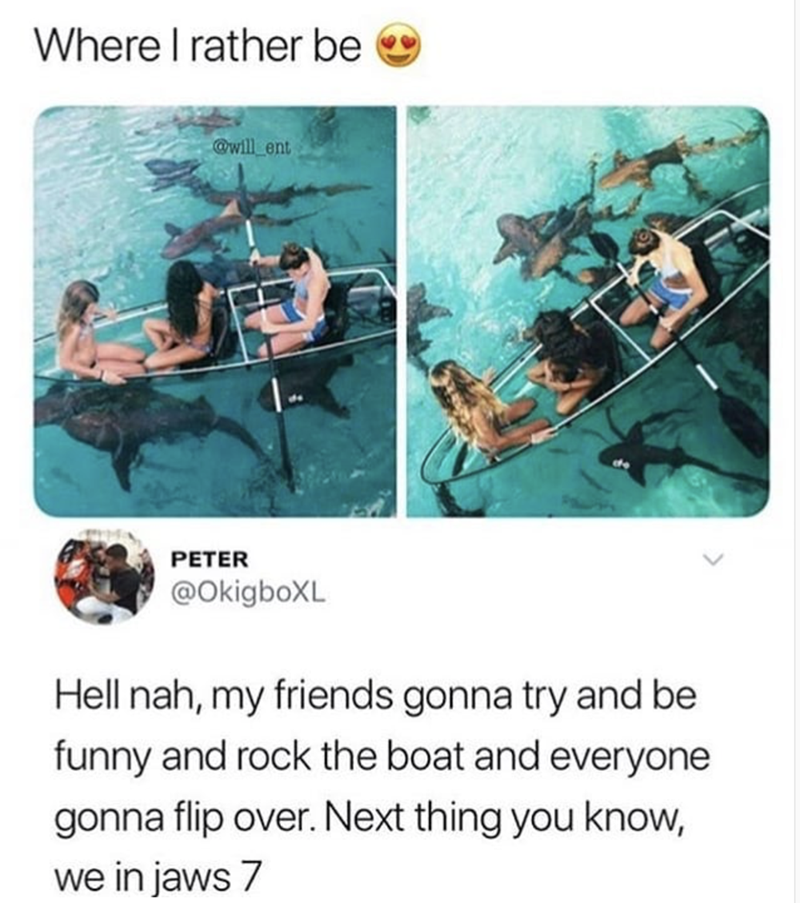 happy meme about not wanting to go boating with sharks