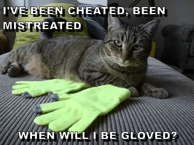 WHEN WILL I BE GLOVED?