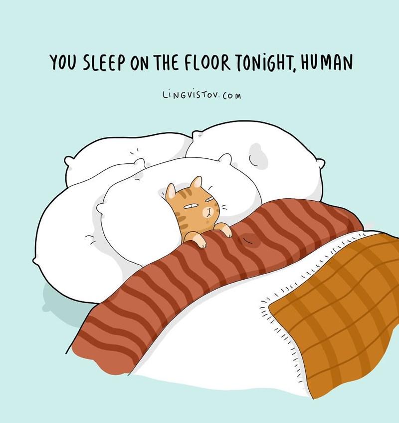 Illustration - YOU SLEEP ON THE FLOOR TONIGHT, HUMAN LINGVISTOV. COM