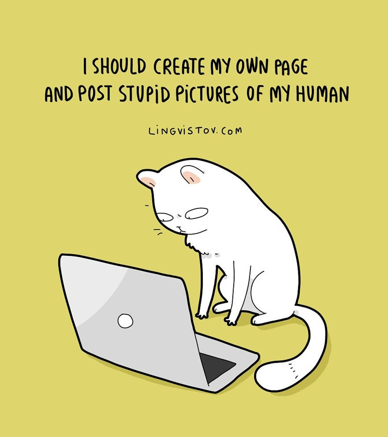 Text - I SHOULD CREATE MY OWN PAGE AND POST STUPID PICTURES OF MY HUMAN LINGVISTOV. CoM