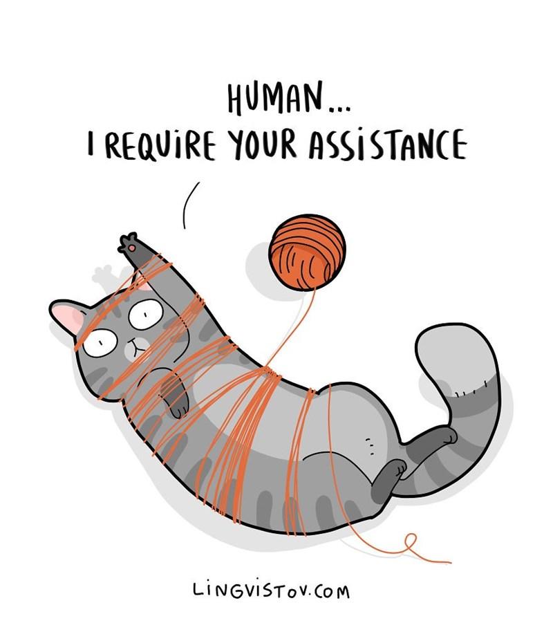 Cartoon - HUMAN... I REQUIRE YOUR ASSISTANCE LINGVISTOV.Com