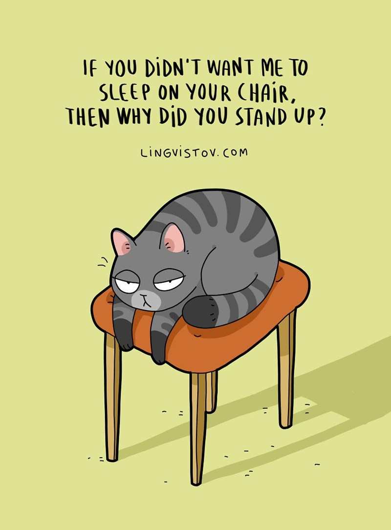 Cartoon - If YOU DIDN'T WANT ME TO SLEEP ON YOUR CHAIR, THEN WHY DID YOU STAND UP? LINGVISTOV. COM