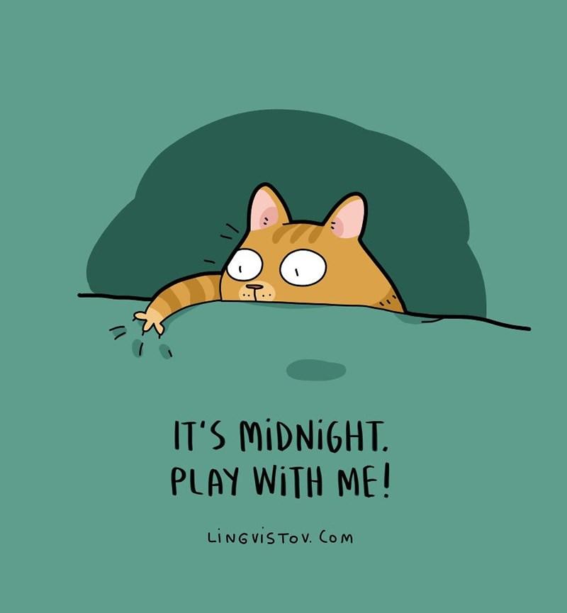Cartoon - IT'S MIDNIGHT PLAY WITH ME! LINGVISTOV. Com
