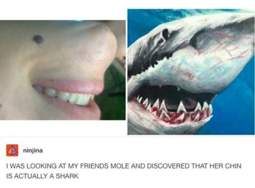 upside down picture of woman smiling compared to shark picture