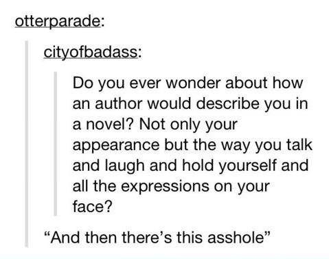 "Text - otterparade: cityofbadass: Do you ever wonder about how an author would describe you in a novel? Not only your appearance but the way you talk and laugh and hold yourself and all the expressions on your face? ""And then there's this asshole"""