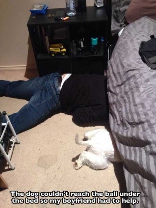 Leg - The dog couldnft reach the balunder the bed so my boyfriend had to help. dund