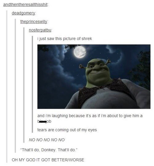 "shrek meme - Text - andthentheresalthisshit deadgomery theprinceswilly nosferpatbu i just saw this picture of shrek and i'm laughing because it's as if i'm about to give hima bob tears are coming out of my eyes NO NO NO NO NO ""That'll do, Donkey. That'll do. OH MY GOD IT GOT BETTERWORSE"