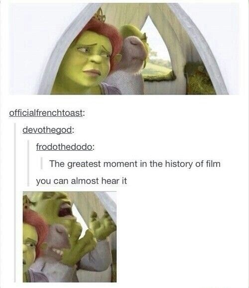 shrek meme - Plant - officialfrenchtoast: devothegod: frodothedodo: The greatest moment in the history of film you can almost hear it