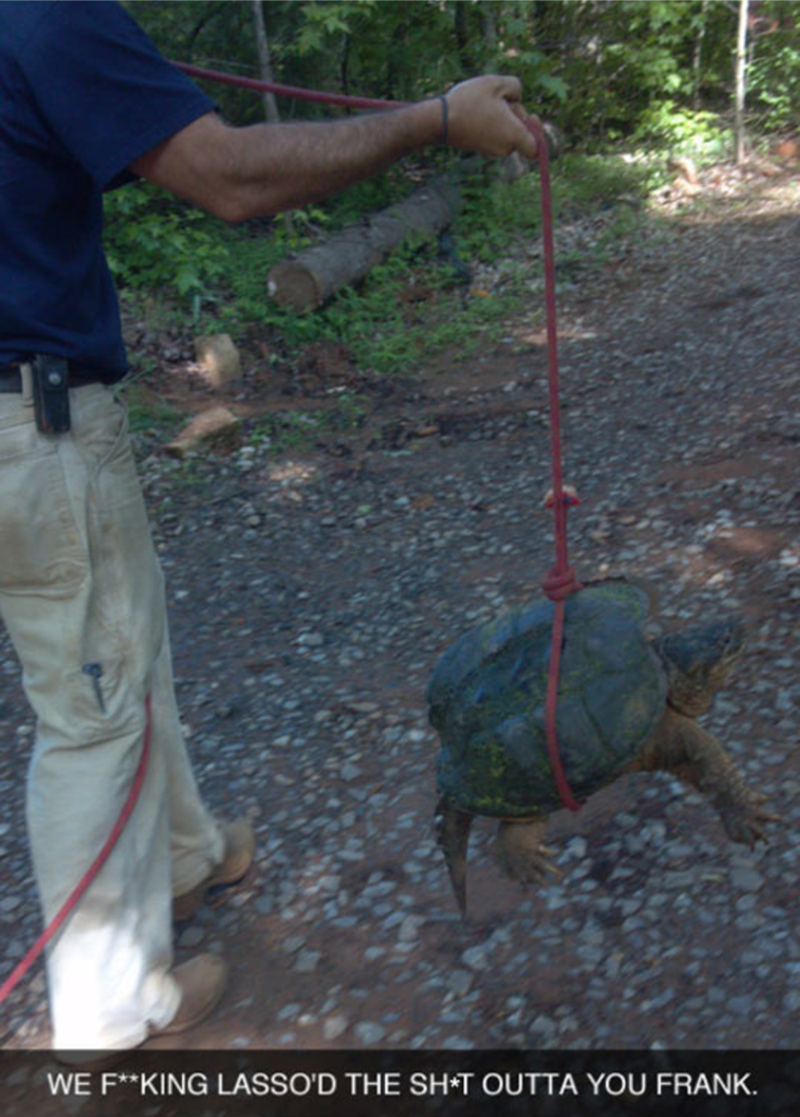 Turtle - WE F**KING LASSO'D THE SH T OUTTA YOU FRANK.