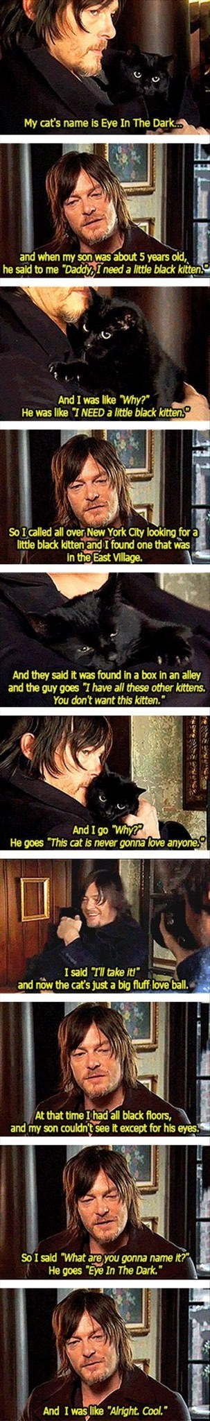 """wholesome meme - Photo caption - My cat's name is Eye In The Dark.. and when my son was about 5 years old he said to me """"Daddy,I need a little black kitten. And I was like Why?"""" He was like """"I NEED a little black kitten."""