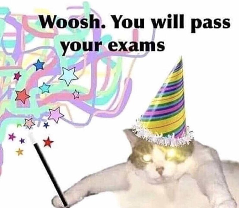 wholesome meme - Cartoon - Woosh. You will pass your exams