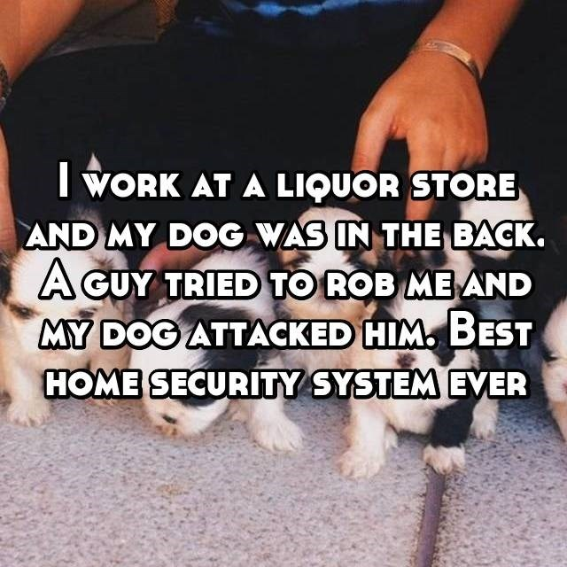 I work at a liquor store and my dog was in the back. A guy tried to rob me and my dog attacked him. Best home security system ever""
