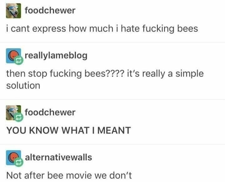 Text - foodchewer i cant express how much i hate fucking bees reallylameblog then stop fucking bees???? it's really a simple solution foodchewer YOU KNOW WHAT I MEANT alternativewalls Not after bee movie we don't