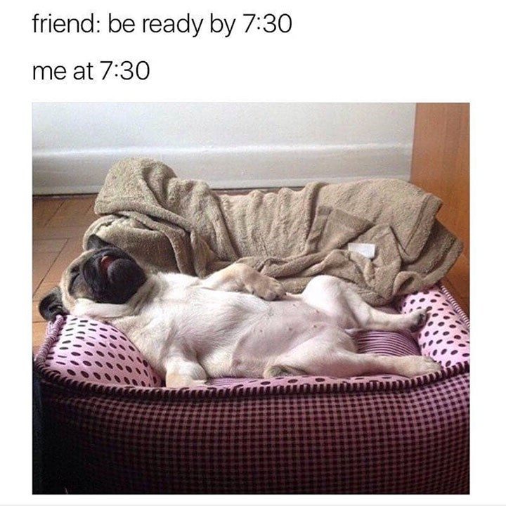 dog memes - Product - friend: be ready by 7:30 me at 7:30