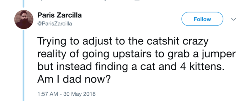 Text - Paris Zarcilla Follow @ParisZarcilla Trying to adjust to the catshit crazy reality of going upstairs to grab a jumper but instead finding a cat and 4 kittens. Am I dad now? 1:57 AM 30 May 2018
