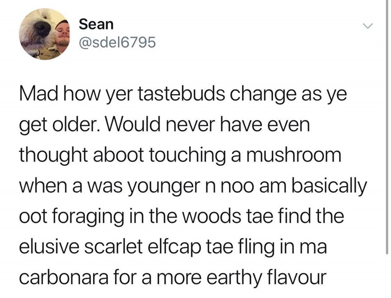 Text - Sean @sdel6795 Mad how yer tastebuds change as ye get older. Would never have even thought aboot touching a mushroom when a was younger n noo am basically oot foraging in the woods tae find the elusive scarlet elfcap tae fling in ma carbonara for a more earthy flavour