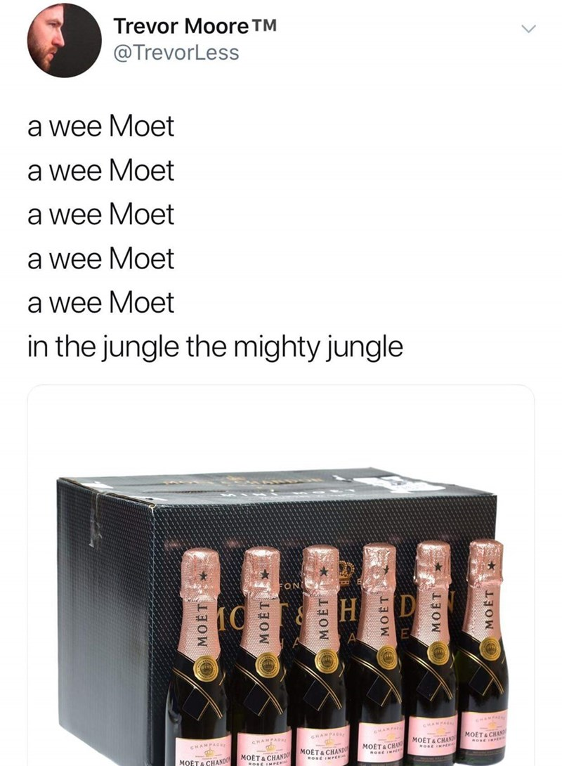 Product - Trevor Moore TM @TrevorLess a wee Moet a wee Moet a wee Moet a wee Moet a wee Moet in the jungle the mighty jungle FON H MOET& CHAN CHAMPAGNE MOET&CHAND MOET& CHAN MOET & CHAND МОЁТ В СНANDO MOFT& CHANDO MOET MOET MOET MOET MOET MOET