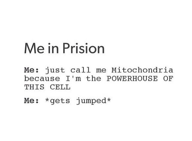 Text - Me in Prision Me: just call me Mitochondria because I'm the POWERHOUSE OF THIS CELL Me: *gets jumped