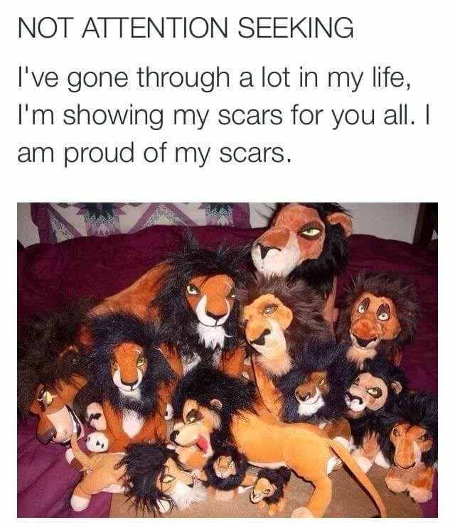 Funny meme about scars, puns, the lion king.