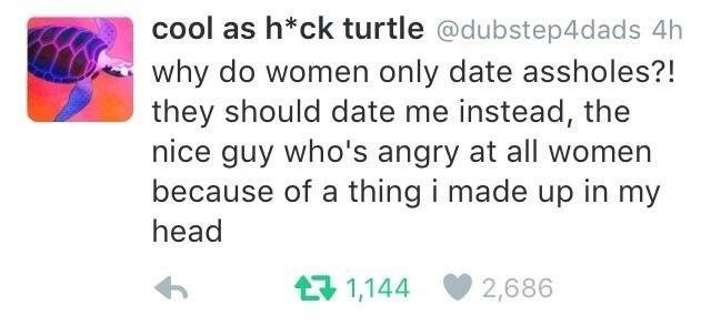 Text - cool as h*ck turtle @dubstep4dads 4h why do women only date assholes?! they should date me instead, the nice guy who's angry at all women because of a thing i made up in my head 1,144 2,686