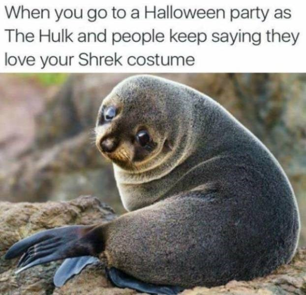 Seal - When you go to a Halloween party as The Hulk and people keep saying they love your Shrek costume