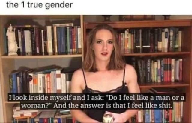 "Library - the 1 true gender I look inside myself and I ask: ""Do I feel like a man or a woman?"" And the answer is that I feel like shit."