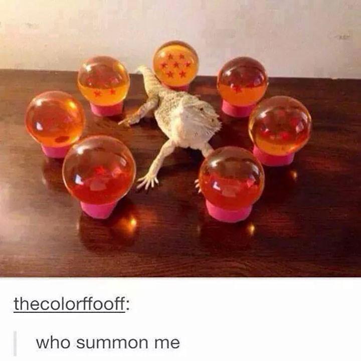Orange - thecolorffooff: who summon me