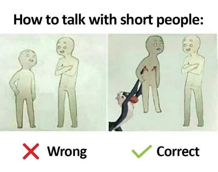 Funny how to talk to short people meme, with rafiki from lion king, disney.