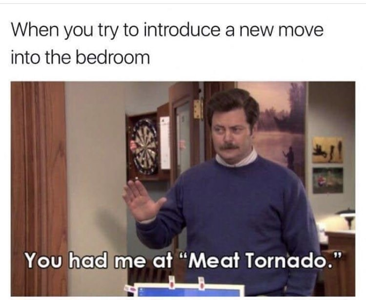 """meme - Text - When you try to introduce a new move into the bedroom You had me at """"Meat Tornado."""""""