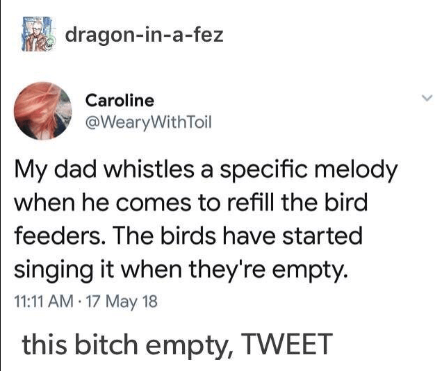 Text - dragon-in-a-fez Caroline @WearyWithToil My dad whistles a specific melody when he comes to refill the bird feeders. The birds have started singing it when they're empty. 11:11 AM 17 May 18 this bitch empty, TWEET