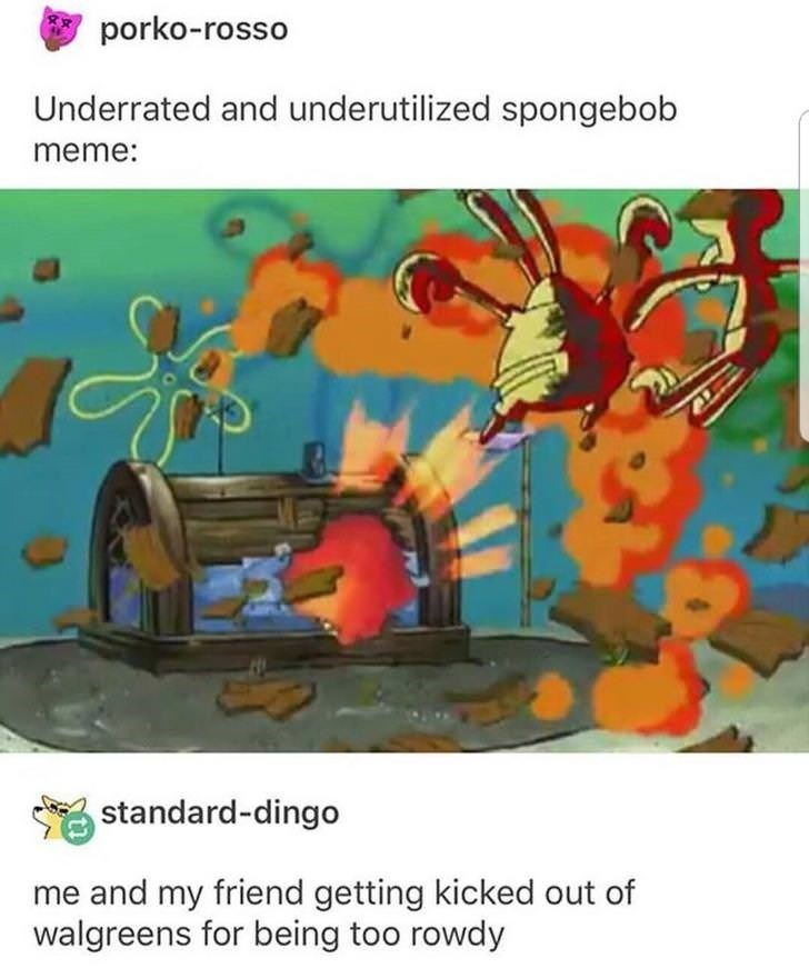 Organism - porko-rosso Underrated and underutilized spongebob meme: standard-dingo me and my friend getting kicked out of walgreens for being too rowdy