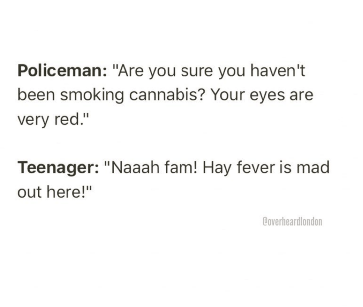 """Text - Policeman: """"Are you sure you haven't been smoking cannabis? Your eyes are very red."""" Teenager: """"Naaah fam! Hay fever is mad out here!"""" Coverheardlondon"""