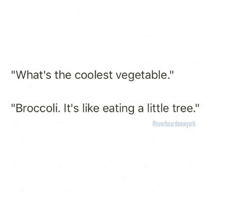 """Text - """"What's the coolest vegetable."""" """"Broccoli. It's like eating a little tree."""" Boverheardnewyork"""
