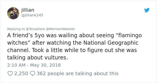 """Text - jillian @jilliank245 Replying to @TessaDare @MerriamWebster A friend's 5yo was wailing about seeing """"flamingo witches"""" after watching the National Geographic channel. Took a little while to figure out she was talking about vultures. 2:10 AM May 30, 2018 2,250 362 people are talking about this"""